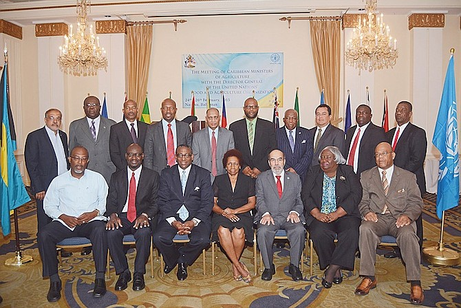 The gathering of CARICOM agriculture ministers yesterday. Photo: Shawn Hanna/Tribune staff