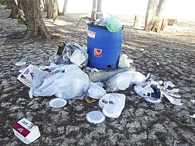 One of the overflowing waste bins at Goodman's Bay.