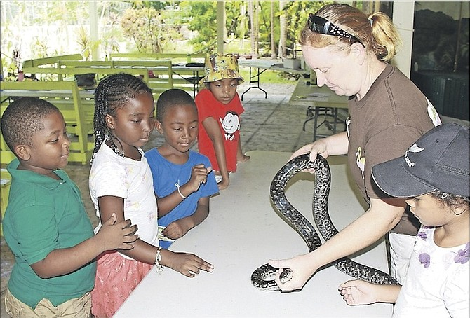 Youngsters at the Ardastra Gardens summer camp meet Daisy the boa constrictor yesterday.