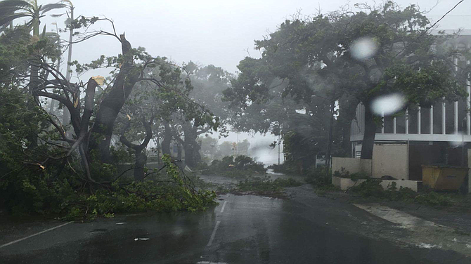 The scene on East Bay Street near the Paradise Island bridge on Thursday morning, with trees down and blocking the road
