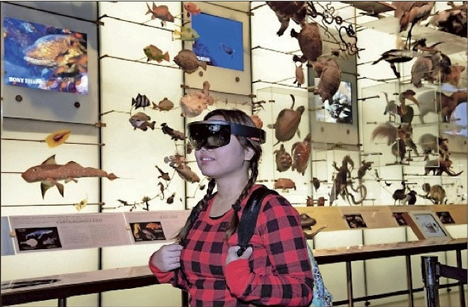 A visitor at the American Museum of Natural History in New York experiences 'AR Shark,' a prototype augmented reality program that overlays CT scan data on a Mako shark model in the Hall of Biodiversity. (AP)