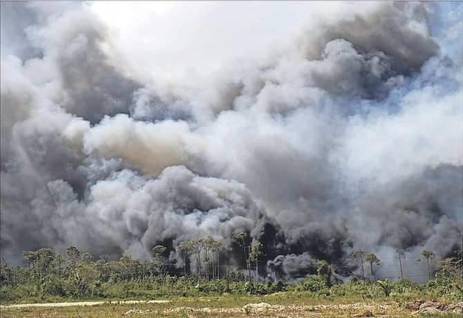 Clouds of smoke from a fire at the landfill earlier this year. Photo: Shawn Hanna/Tribune Staff