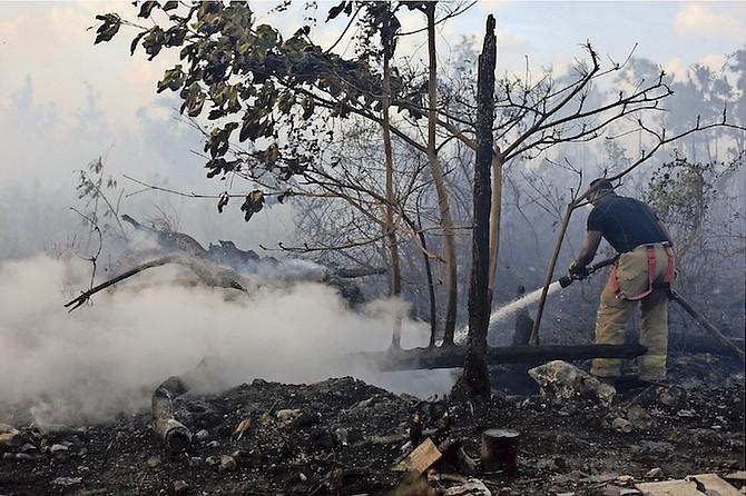 A bush fire off Carmichael Road that started near Dignity Gardens. Photo: Terrel W. Carey/Tribune Staff