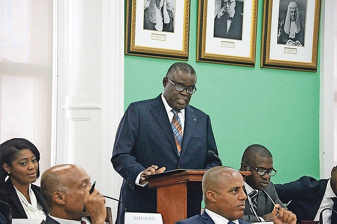 State Minister for Public Service and National Insurance Brensil Rolle speaks in the House of Assembly earlier this year.