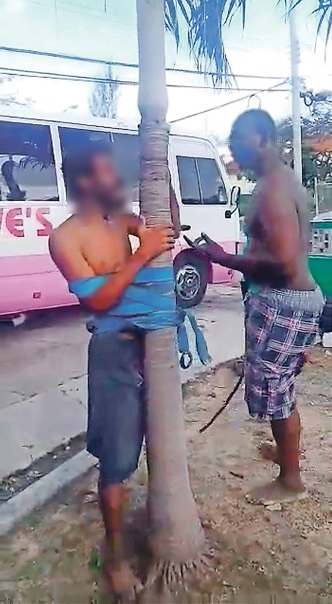 In this image from a video circulating on social media, a man is seen tied to a tree and being threatened with a belt prior to being threatened with a machete.