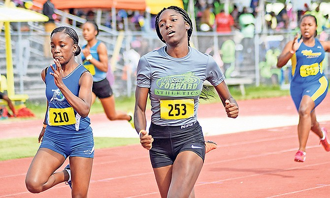 Athletes compete in the Roadrunners Track Classic on Saturday. Photo: Shawn Hanna/Tribune staff