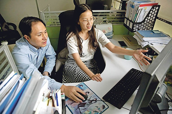 He Jiankui, left, and Zhou Xiaoqin work a computer at a laboratory in Shenzhen in southern China's Guangdong province in October. Chinese scientist He claims he helped make world's first genetically edited babies: twin girls whose DNA he said he altered. He revealed it Monday in Hong Kong to one of the organisers of an international conference on gene editing. (AP Photo/Mark Schiefelbein)