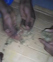 (STRONG LANGUAGE) One of the videos showing the hands of the men breaking down what appears to be a package of marijuana.